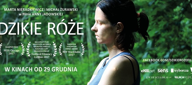 Filmy, które zachwyciły polskich krytyków