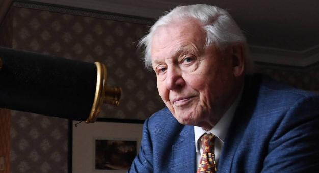 Sir David Attenborough założył konto na Instagramie