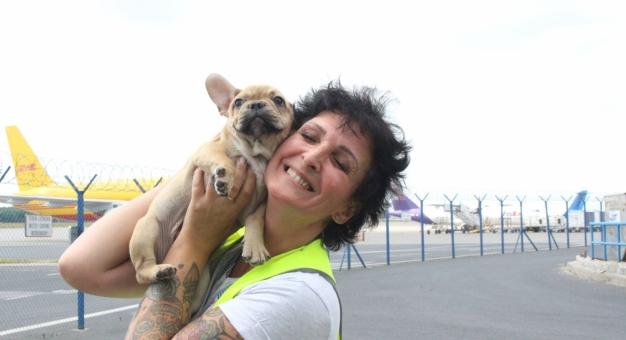 Marta Gawęcka - to ona opiekuje się podróżującymi samolotem zwierzętami!