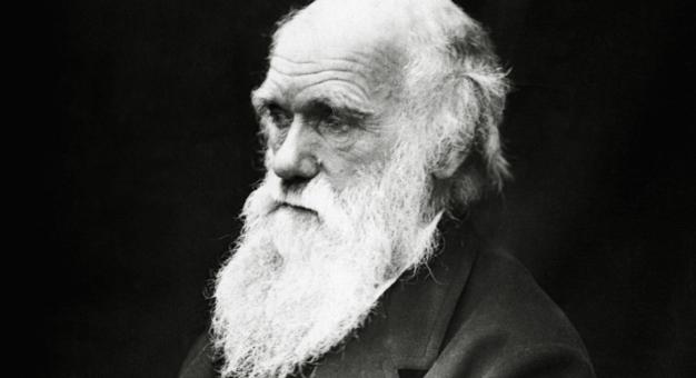 W Bibliotece Uniwersytetu Cambridge zaginęły notatniki Karola Darwina