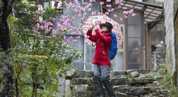 Japonia - turystyczny klejnot blogerów podróżniczych